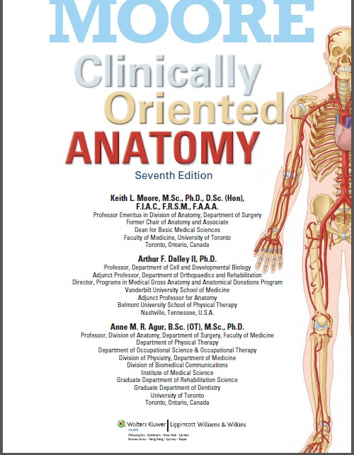 Download Of Clinically Oriented Anatomy By Keith Moore Value Focus
