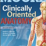 Anatomy made ridiculously simple free download