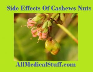 cashew nut side effects
