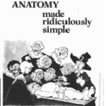 download clinical anatomy made ridiculously simple pdf free