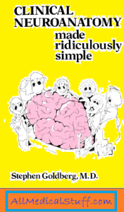 clinical neuroanatomy made ridiculously simple pdf-download free