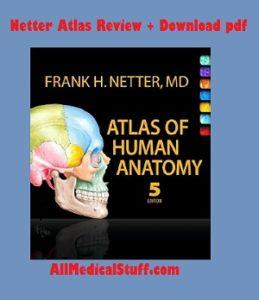 netter atlas pdf