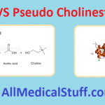 differences between true and pseudo cholinesterases